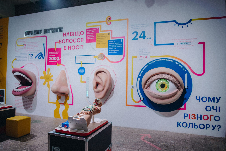 SCIENCE MUSEUM Зона _Людина_, де можна вивчити роботу організму людини-min
